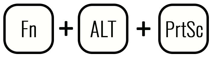Cочетание клавиш Fn+Alt+PrtSc
