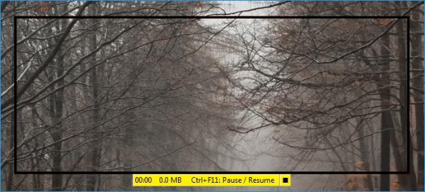 Процесс записи FastStone Capture