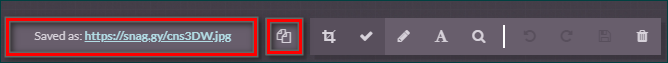 Сохранение ссылки в Snaggy