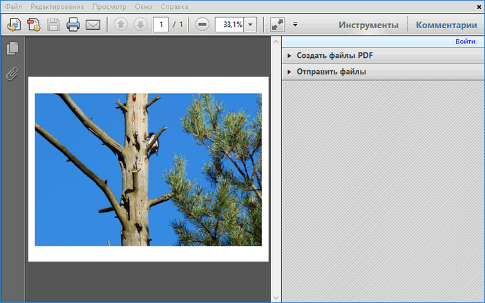 Сохраненный PDF-документ в FastStone