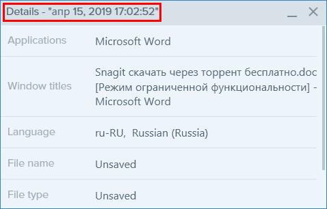 Сведения о скриншоте в Snagit