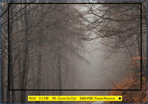 Управление записью FastStone Capture