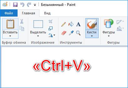 Вставить скрин в Пайнт при помощи клавиш «Ctrl+V»
