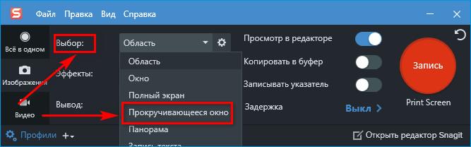 Выбор функции прокрутки окна в Snegit