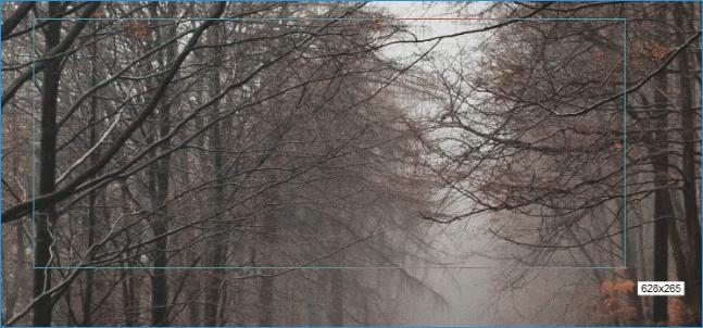 Выделение окна FastStone Capture