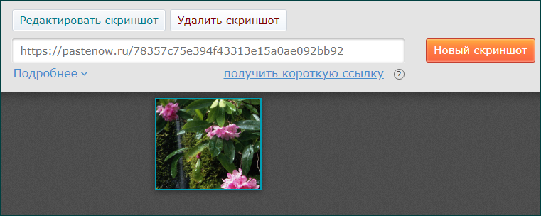 Загрузка скриншота в программе PasteNow